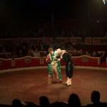 Circus_001_tn