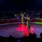 Circus_005_tn